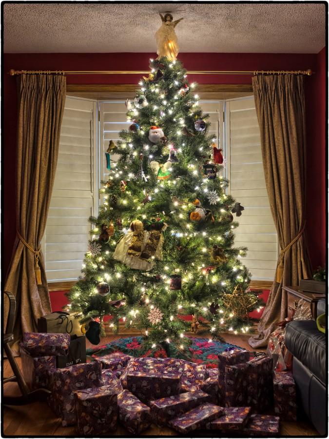 Arbol de Navidad, navidad, interior, iluminado, arbol, navideño, luces,