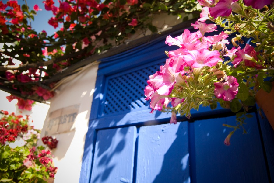 puerta, primavera, azul, casa, entrada, pared, arquitectura, flor, flores, fachada,