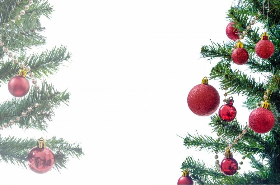 navidad, detalle, adorno, navideo, navidea, decoracion, celebracion, 2015, festejo, fondo blanco, arbol de navidad, arbol,