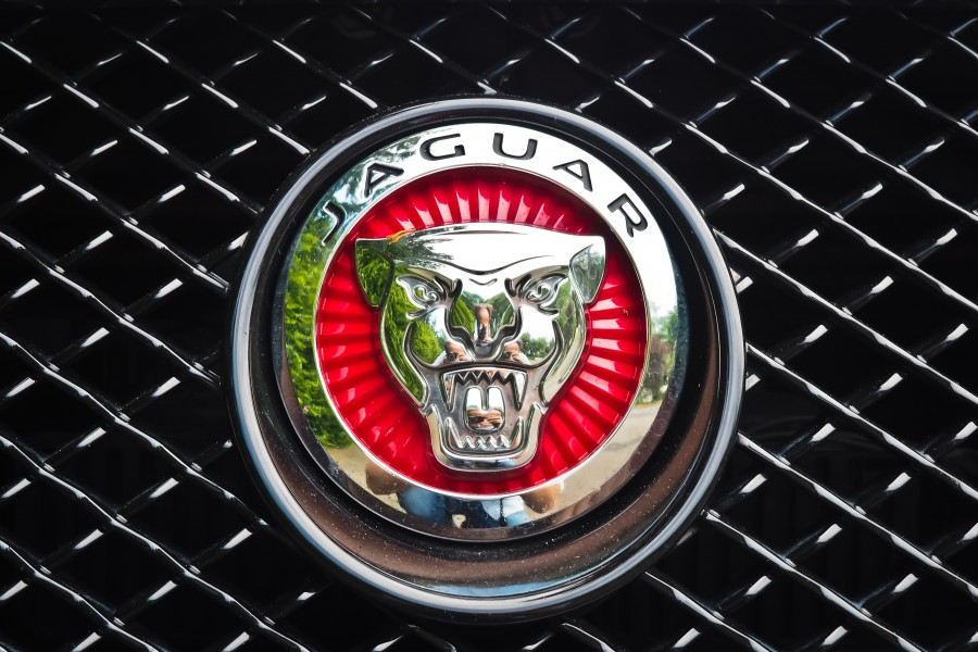 logo, insignia, jaguar, auto, deportivo, primer plano, plateado, lujo, simbolo, marca,