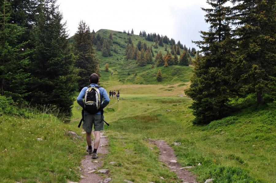 una persona, gente, hombre, aire libre, bosque, montaña, treking, deporte, caminar, caminata, libertad, salud, adulto, explorar, camino, sendero,