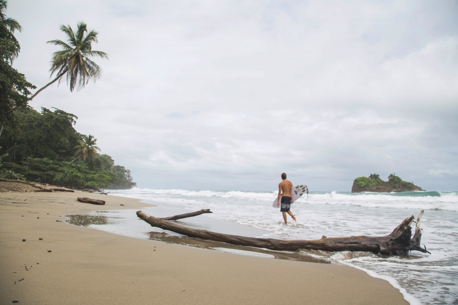 playa, surf, hombre, tabla, mar, panama, caribe, olas, deporte, aire libre, actividad, joven, una persona, caminar, tropical,