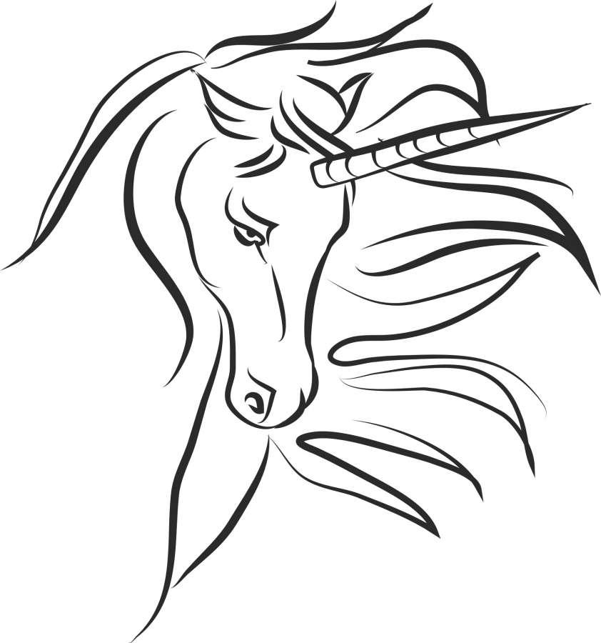 Imagen De Dibujo De Unicornio Para Colorear Foto Gratis