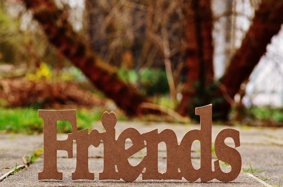 amigos, amistad, juntos, amor, lealtad, palabra, madera, adorno, primer plano