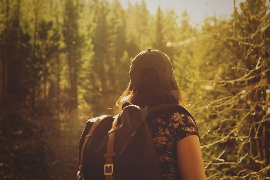 trekking, senderismo, deporte, equilibrio, arbol, bosque, paisaje, naturaleza, una persona, gente, hombre, vacaciones, viajar, viaje, mujer, joven, mochila, fondos de pantalla hd, fondos de pantalla 4k