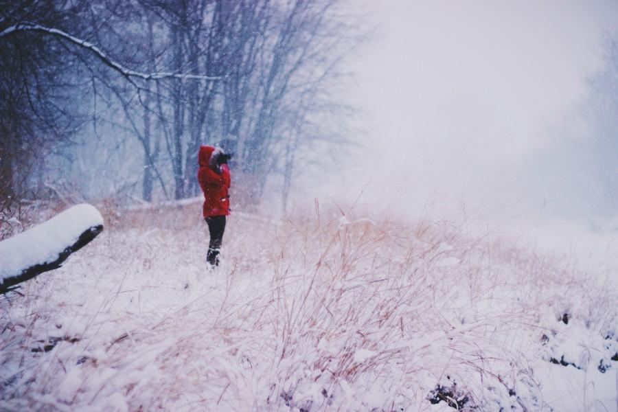 una persona, gente, mujer, invierno, nieve, nevado, rojo, exterior, frio, concepto,