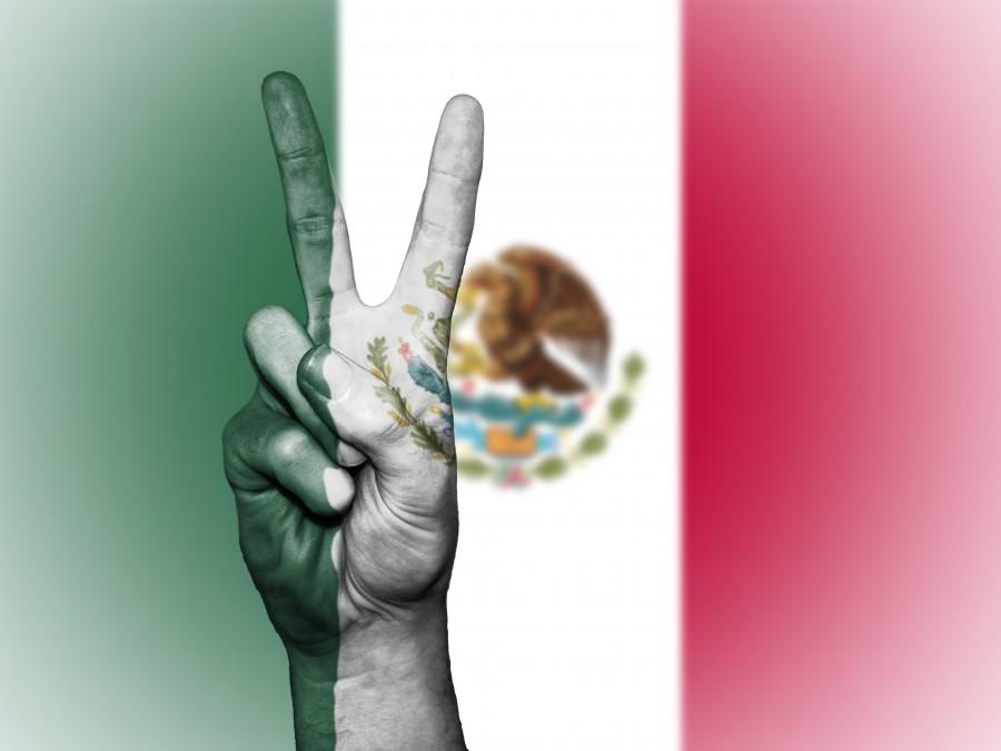 mexico, la paz, mano, nación, de fondo, banner, colores, país, alférez, bandera, icono, nacional, estado, símbolo, el turismo, viaje