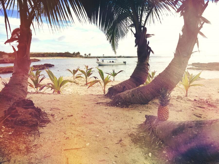 Barco, tropical, playa, verano, vacaciones, relajar, méxico, paisaje, mar
