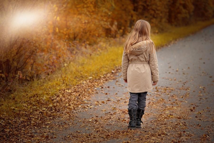 otoño, niña, una persona, 10 años, rubio, rubia, hoja, hojas, otoñal, paisaje, exterior, campera,