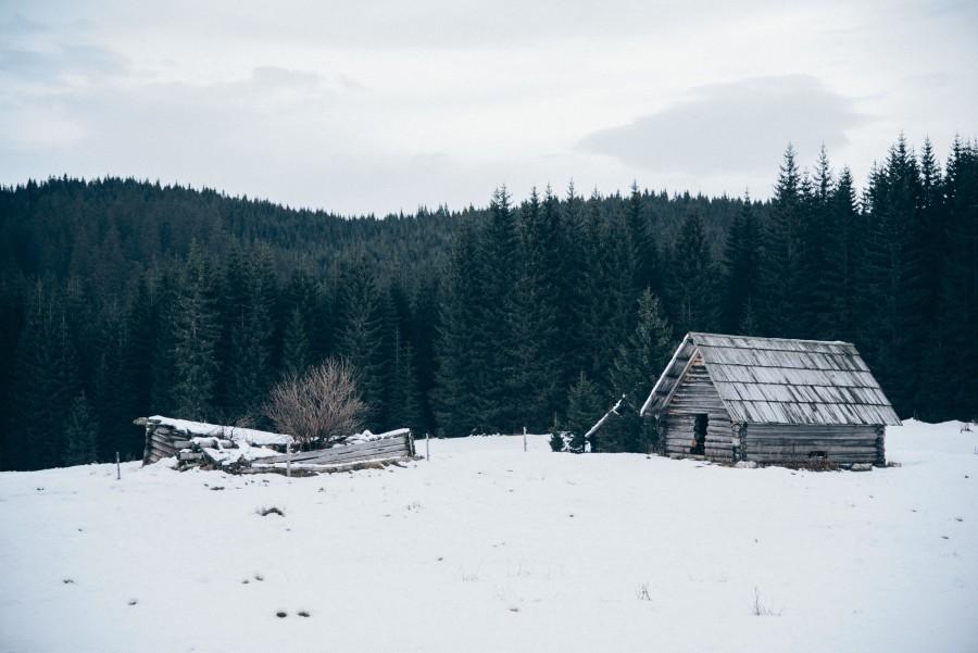 cabaña, bosque, nieve, invierno, paisaje, madera,