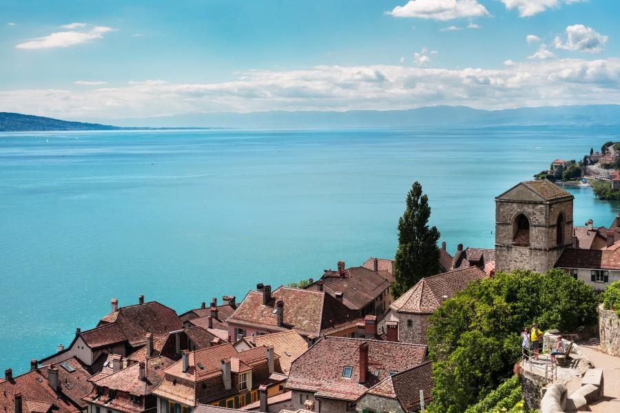 Saint Saphorin, Suiza, Europa, costa, pueblo, poblado, dia, aldea, fondos de pantalla hd, fondos de pantalla 4k