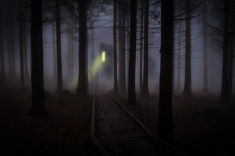 niebla, misterio, bosque, casa, tenebroso, halloween, luz, nadie, nocturno, noche,