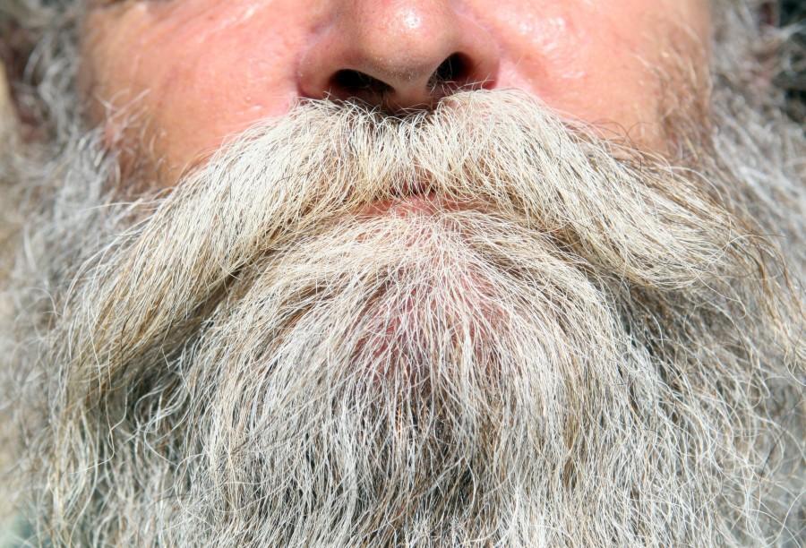 hombre, adulto, barba, anciano, rostro, cara, una persona, vista de frente,