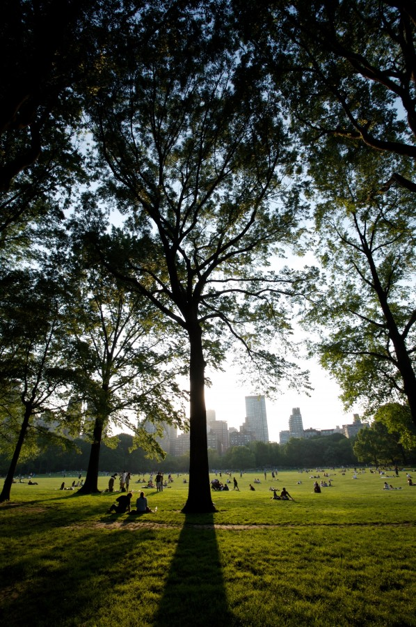new york, usa, estados unidos, central park, parque, dia, gente, aire libre, recreacion,