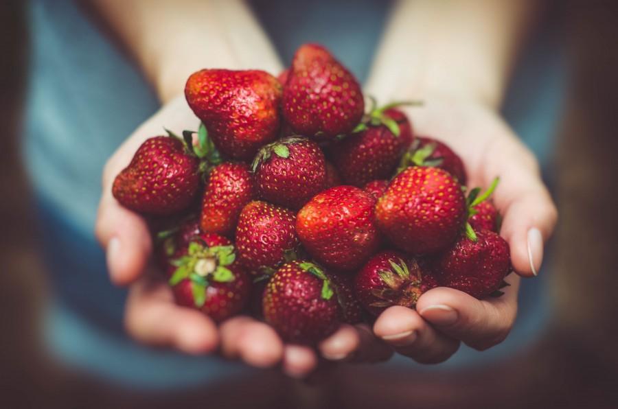 frutillas, mano,mujer, ofrecer, ofreciendo, frutas, rojo, cultivo, cosecha, concepto, dar, natural, manojo, mucho, fondos de pantalla 4k