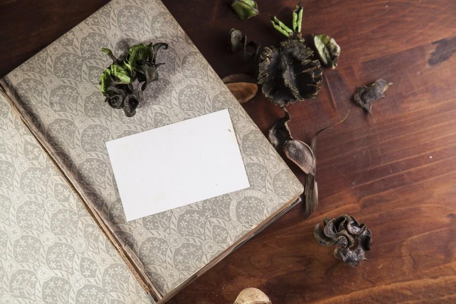 diario, antiguo, vintage, carta, anotador, libreta, papel, blanco, vacio, fondo,