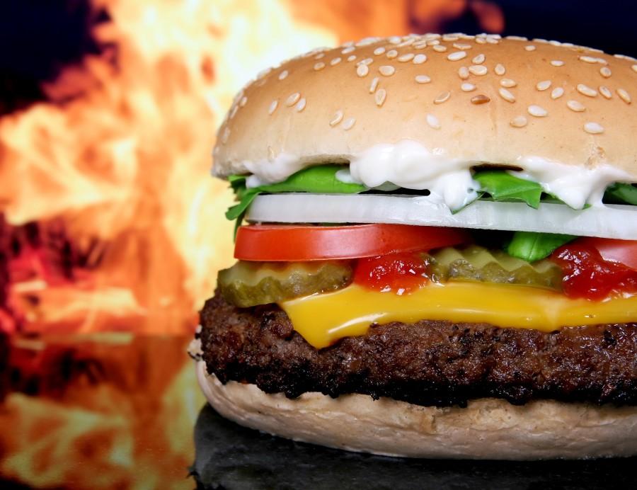 hamburguesa, queso, fuego, concepto, comida rapida, carne, plato, comida, queso cheddar,
