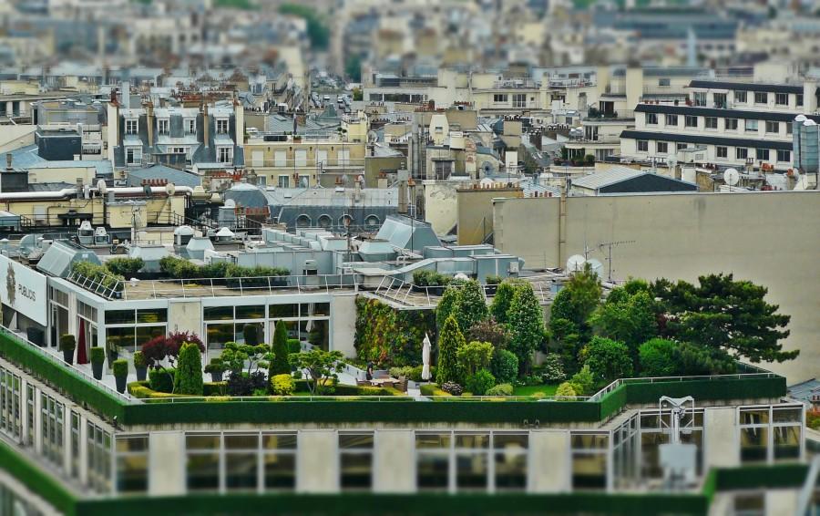 terraza, ciudad, arquitectura, urbano, paisaje urbano, techo, jardin, arboles, tilt shift,