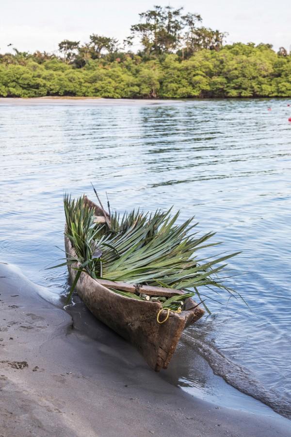 panama, isla, playa, tropical, costa, canoa, bote, palmera, nadie, transporte, rio, playa, vacaciones, hojas de palmera,