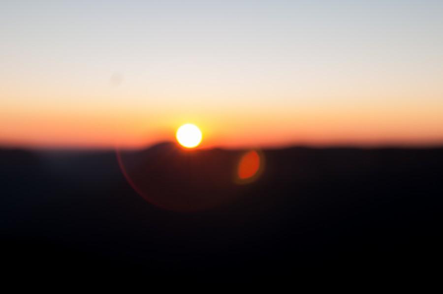 Bokeh, Puesta de sol, Arboles, extracto, fondo, corteza, mancha, marron, bosque, paisaje, perdida de luz, luz, natural, naturaleza, cielo, sol, salida del sol, textura, madera,