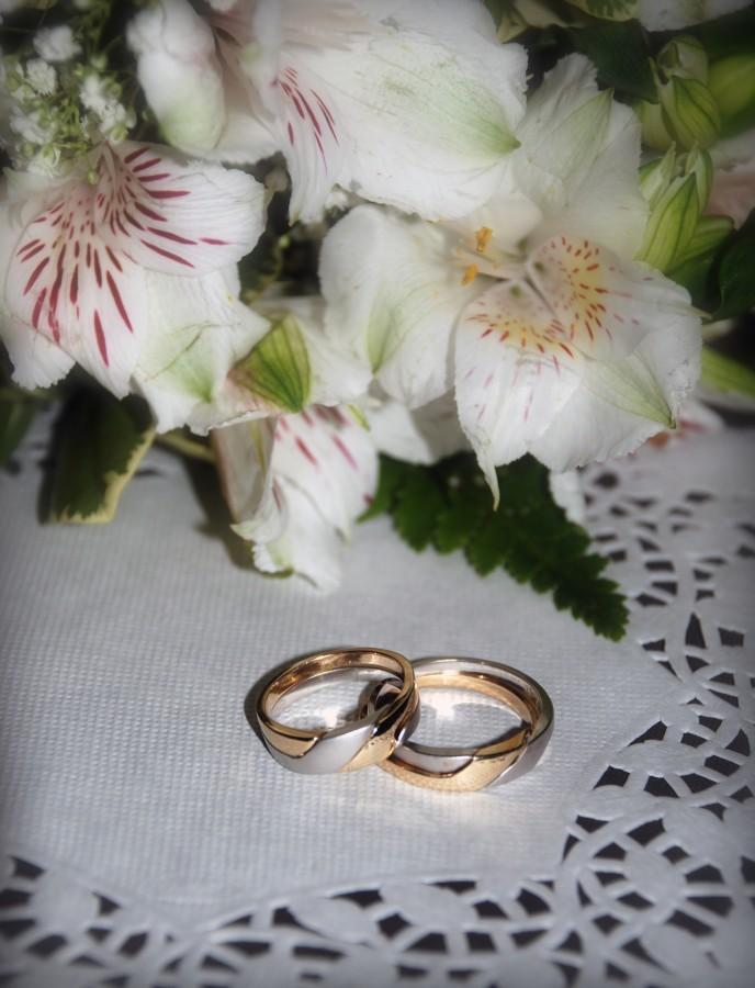 Imagen de anillos de compromiso de oro y plata foto gratis 100006210 - Anillo de casado mano ...