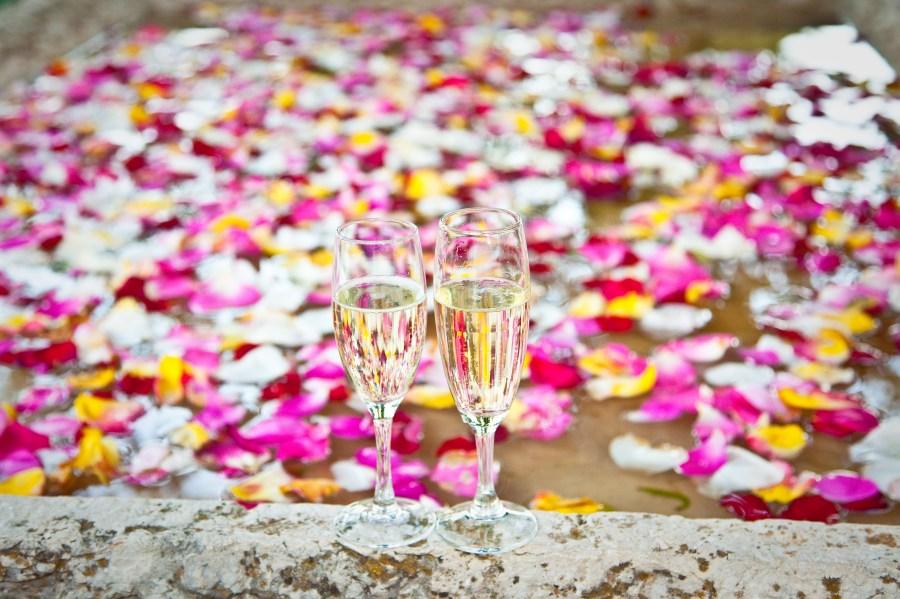 Brindis, copa, copas, cristal, celebracion, pareja, celebrar, aniversario, amor, Concepto, petalo, petalos, colorido, dos, festejo, alegria, bridar, champagne, bebida alcoholica,