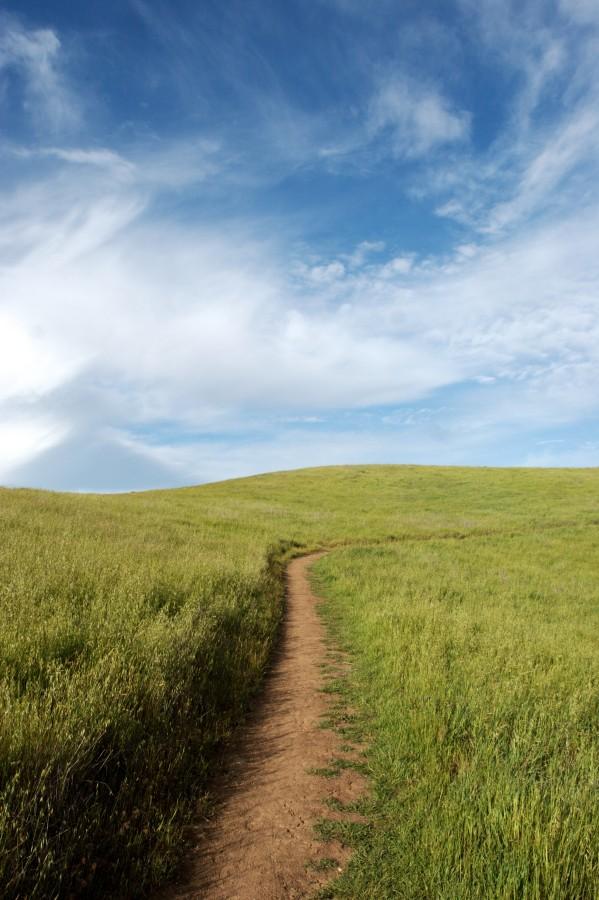 camino, campo, dia, escena rural, nadie, sendero, naturaleza, paisaje,