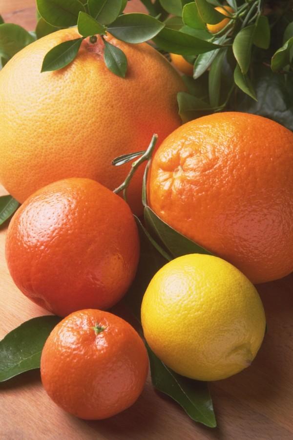 citricos, citrico, naranja, pomelo, limon, fruta, frutas, frutal, background,