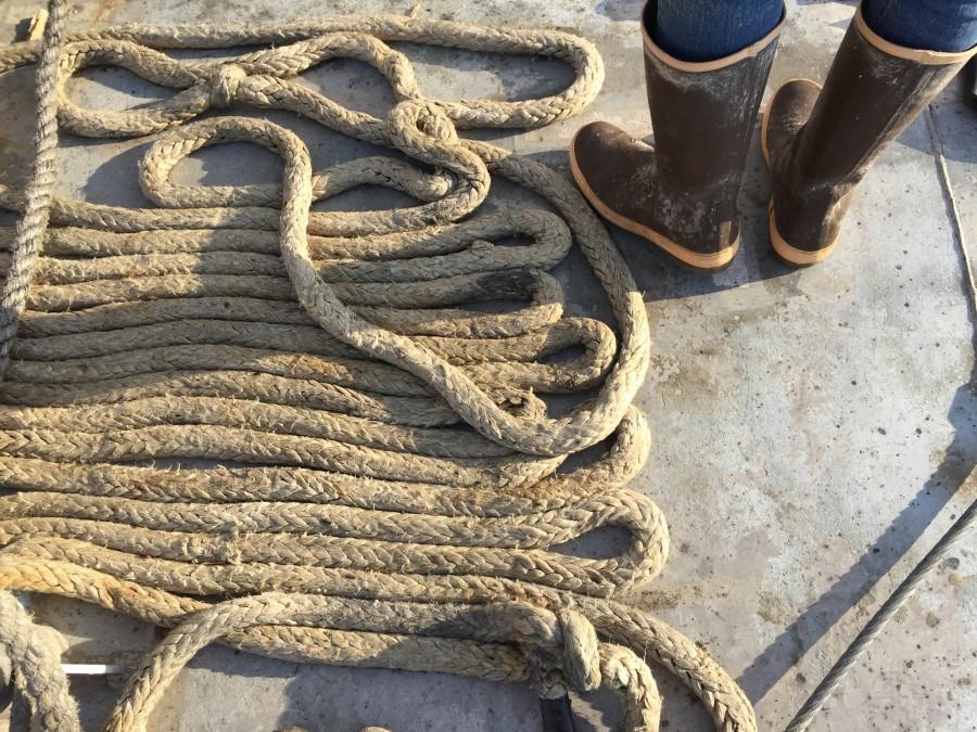 una persona, gente, hombre, bota, botas, marinero, soga, cuerda, puerto, trabajo,