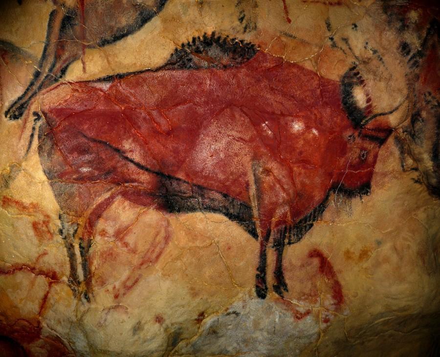 pintura, rupestre, cueva, cuevas, cueva de altamira, altamira, españa, europa, antiguedad, arte, antiguo,
