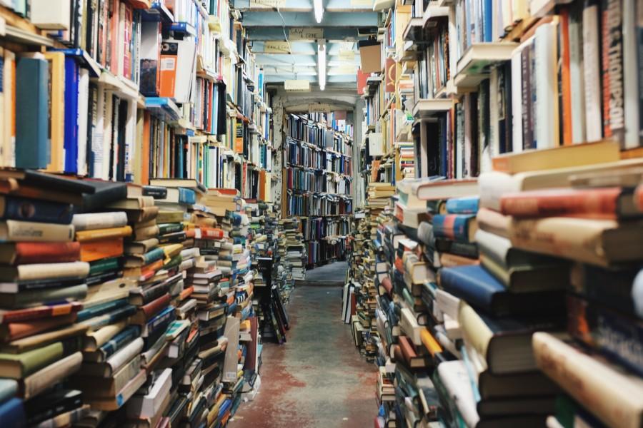 pasillo, libreria, libro, libros, interior, mucho, muchos, lectura, educacion, literatura,