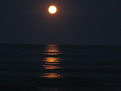 imágenes gratis cielo,noche,luna,luna llena,vista de frente,natura