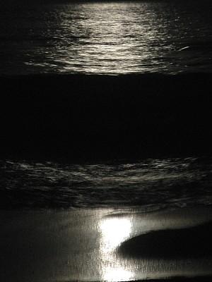 cielo,noche,luna,luna llena,vista de frente,natura