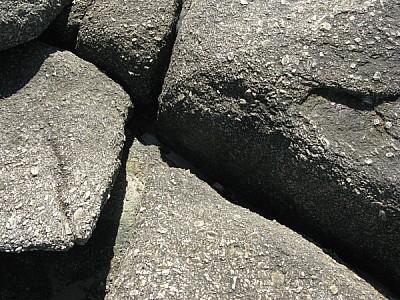 imágenes gratis Primer plano de rocas textura