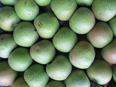 fruta,frutas,manzana,manzanas,vista de frente,verd