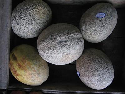 imágenes gratis fruta,frutas,naranja,naranjas,limones,vista de fre