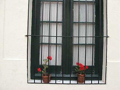 imágenes gratis colonia,uruguay,sudamerica,america del sur,america