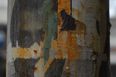 imágenes gratis fondo,background,pared,muro,muros,papel,afiche,vie