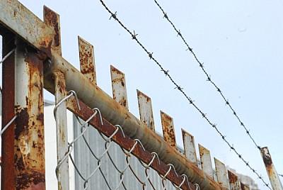 imágenes gratis reja,vista de abajo,alambre,alambre tejido,metal,n