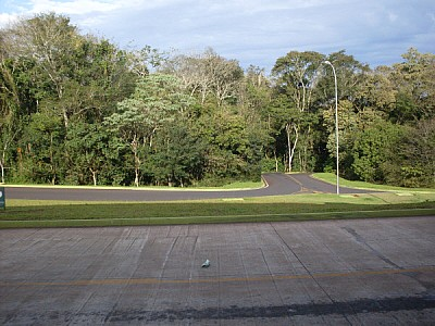 ruta,rutas,carretera,carreteras,asfalto,piso,selva