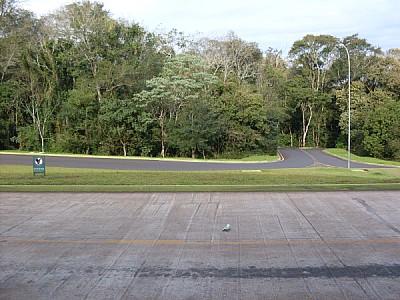 imágenes gratis ruta,rutas,carretera,carreteras,asfalto,piso,selva