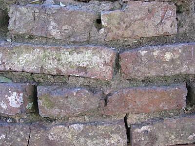 pared,paredes,ladrillo,ladrillos,vista de frente,f