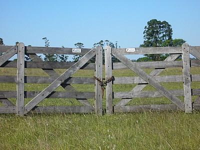 argentina,corrientes,paisaje,campo,escena rural,tr
