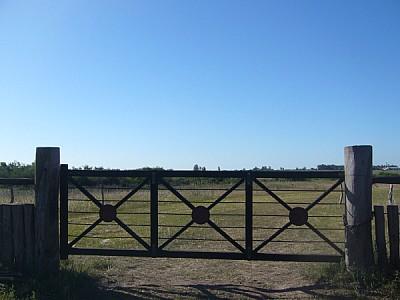 imágenes gratis argentina,corrientes,paisaje,campo,escena rural,tr