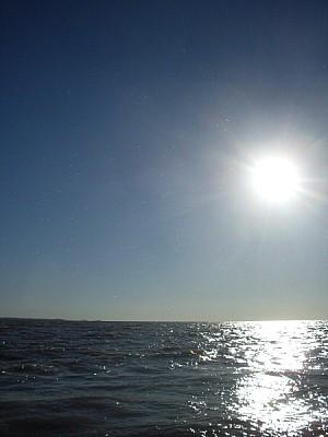 imágenes gratis argentina,buenos aires,tigre,delta,parana,parana d