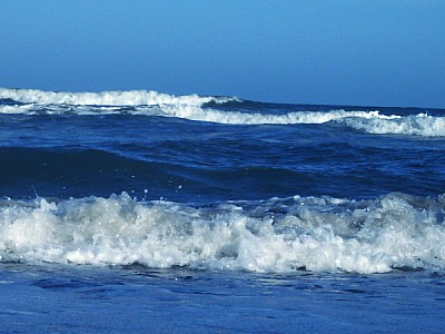 Mar Movido Costa Atlantica Argentina
