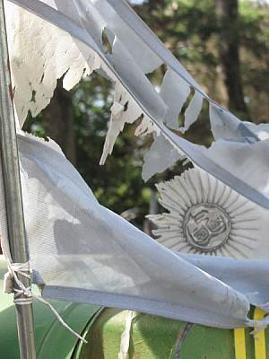 imágenes gratis bandera,argentina,vista de frente,roto,rota,desgas