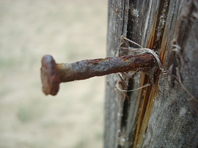 clavo,metal,oxido,oxidado,viejo,vista de frente,an