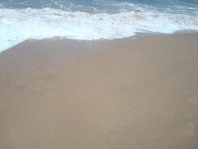 imágenes gratis arena,playa,costa,mar,espuma,piso,nadie,vista de f