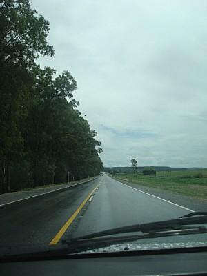 auto,coche,carro,vista de frente,ruta,carretera,ca